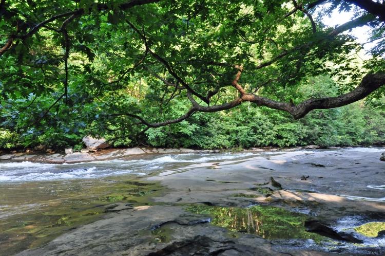 Flat Rock Ohiopyle State Park Hike