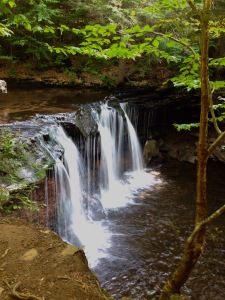 Ricketts Glen State Park Waterfall, Falls Trail Hike