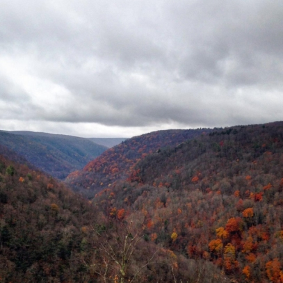 Overlooking a ravine of fall foliage in the mountains of West Virginia